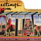 Montana Acrylic Postcard Magnet