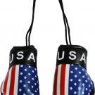 USA Mini Boxing Gloves