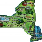 New York Acrylic State Map Magnet
