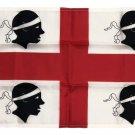 """Sardinia - 12""""X18"""" Nylon Flag"""