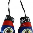 Belize Mini Boxing Gloves