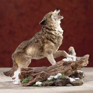 Howling Wolf On Snow