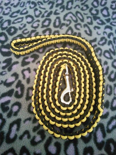 Yellow/Black leash
