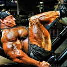 Bodybuilder ART ATWOOD High Definition 13x19 inch  Photo Picture Print
