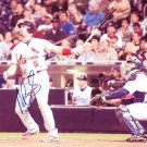 ALBERT PUJOLS Autographed signed 8x10 Photo Picture REPRINT