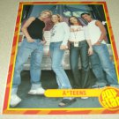 A*Teens Pinup & Clipping Set