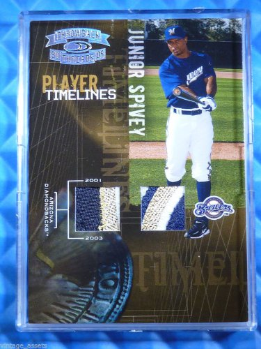2005 Throwback Threads JUNIOR SPIVEY Timelines Jersey Patch #24/25 LOGO 5 Color