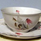 Bavaria Royal Duchess Fine China  Cup & Saucer Set in  Mountain Bell Pattern