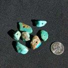 7 Turquoise Beads