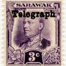 (I.B) Sarawak Telegraphs : Overprint 3c