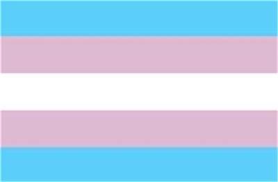 "Transgender Flag Sticker 3"" x 5"" Transgendered Pride"