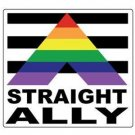 Straight Ally Gay Pride Bumper Sticker