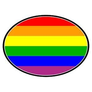 Gay Pride Flag Auto Magnet Euro Rainbow