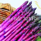 50 Purple Passion asparagus seed potted vegetable seed health