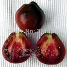 50 Japanese Black Trifele Tomato Seeds Organic black fruit