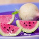50 watermelon red radish seeds cutedelicious salad or fruit radish