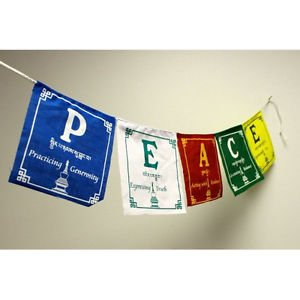 P.E.A.C.E. Prayer Flags  ,NEPAL