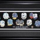 St. Louis Blues Jersey Evolution frame