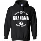Promoted to grandma 2016 Hoodie