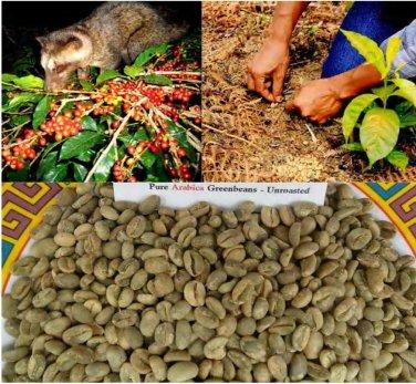 Kopi Luwak 426 Grams Pure Arabica Wild Civet Green Coffee Beans Unroasted