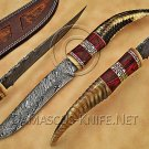 Handmade Damascus Steel Collectible Hunting Knife Ram Handle DHK891