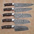 Chef's Set Fine Handmade Full Tang Damascus Steel 5 Knives DCK671