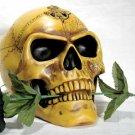 Skull: Alchemist