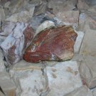 Precious Monument Stone from the Tyrrhenian Sea in Italy - Amber