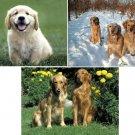 Lot Of 6 Golden Retriever Dog Fabric Panel Quilt Squares