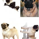 Lot Of 6 Pug Dog Fabric Panel Quilt Squares