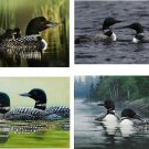 Lot Of 12 Loons Birds Fabric Panel Quilt Squares