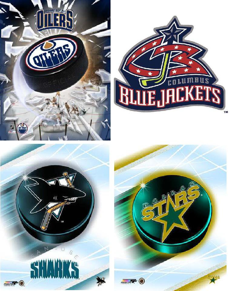 Lot Of 12 Western Hockey NHL Fabric Panel Quilt Squares