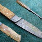 Full Tang Astonishing Custom Hand Made Marvelous Damascus Steel Hunting Knife (HK-286)