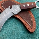 Astonishing Custom Hand Made Marvelous Damascus Steel Karambit Hunting Knife (HK-274)