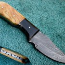 Astonishing Custom Hand Made Damascus Steel Hunting Knife (HK-255)
