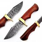 CUSTOM HAND MADE SUPERB QUALITY DAMASCUS STEEL HUNTING KNIFE / SKINNING KNIFE