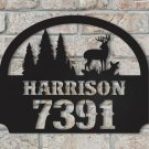 Personalized Metal House Sign with Name and Number