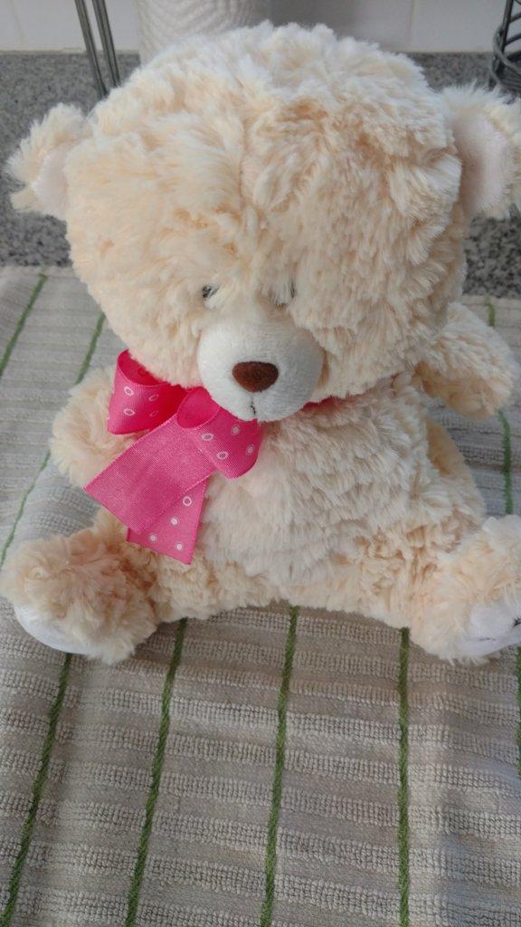 "Bear Doll ""Big Sister on paw"""