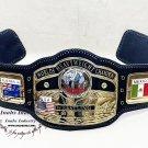 NWA Domed Globe World Heavyweight Wrestling Championship Belt Adult Size Zinc