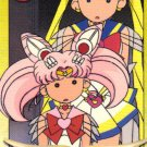 Sailor Moon Graffiti card 276