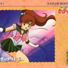Sailor Moon Carddass 3 Card 110