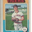 (b-30) 1975 Topps #89: Jim Ray