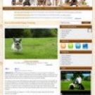 Expert Design – Dog Training Affiliate Website