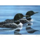 Signed Lithograph, Wildlife Aquatic Loon Birds