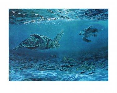 Signed Lithograph, Wildlife Oceanic Loggerhead Sea Turtles