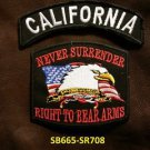 CALIFORNIA and NEVER SURRENDER Small Badge Patches Set for Biker Vest Jacket
