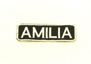 AMILIA Name Tag Patch Iron on or sew on for Shirt Jacket Vest New Name Patches