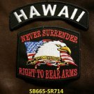 HAWAII and NEVER SURRENDER Small Badge Patches Set for Biker Vest Jacket