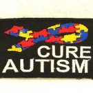 Cure Autism with Multi Color Ribbon Small Badge Biker Vest Motorcycle Patch