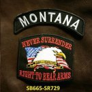 MONTANA and NEVER SURRENDER Small Badge Patches Set for Biker Vest Jacket